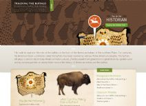 Thumbnail image of Tracking the Buffalo: Stories From a Buffalo Hide Painting homepgae