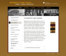 Thumbnail image of Brown v. Board of Education: An Organized Legal Campaign resource