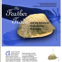 Thumbnail image of The Feather Trade and the American Conservation Movement resource