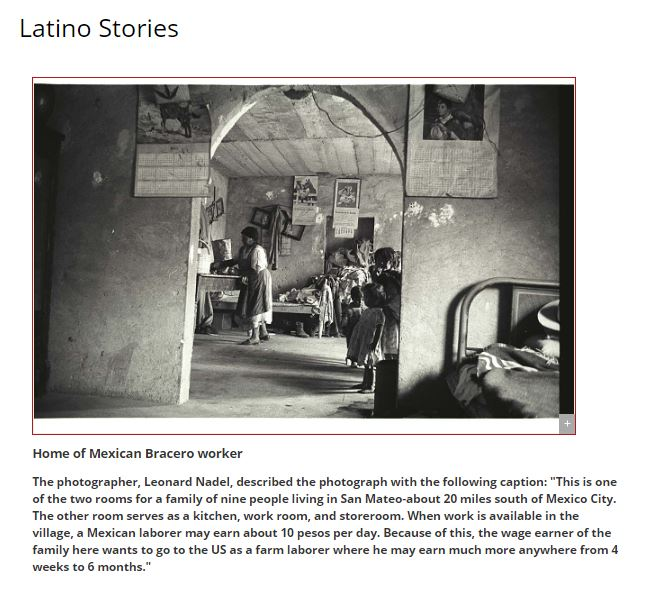 Thumbnail image of essay: Latino Stories