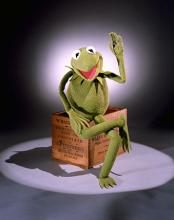 Kermit the Frog puppet sitting on wooden block